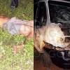 Acidente na BR 405, entre São João e Marizópolis deixa uma vítima fatal. Veja!