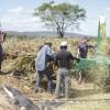 Agricultores de Poço Dantas recebem auxílio na produção de silagem. Veja!
