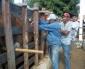 Bernardino Batista inicia a Campanha de Vacinação contra a Febre Aftosa.