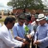 Em solenidade muito prestigiada: Prefeito Gervázio Gomes inicia resgate da cultura do Caju em Bernardino Batista.