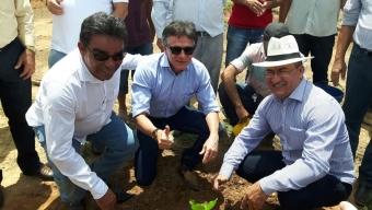 Compromisso da gestão Gervázio Gomes com a cultura do caju, começa a dar frutos.