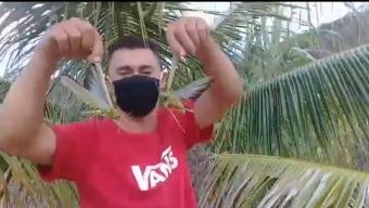 Seria um alerta? Garfanhotos chamam a atenção em município do alto sertão da Paraíba